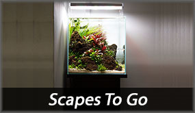 Scapes To Go