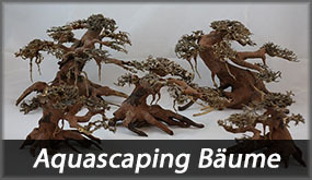 Aquascaping Bäume