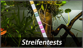 Streifentests