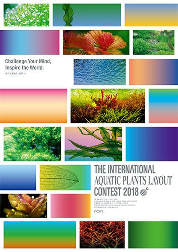 ADA IAPLC Contest Book 2018