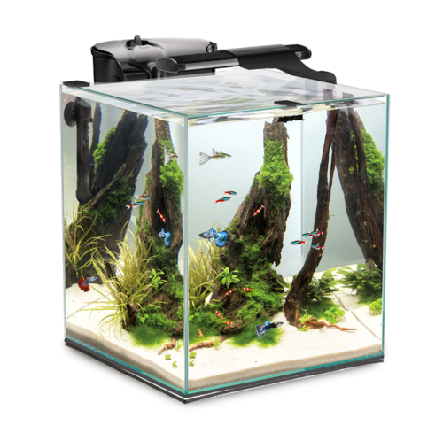 Aquael Shrimp Set SMART DUO 35 - 49 Liter schwarz